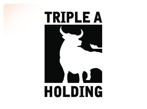 Triple A Holding